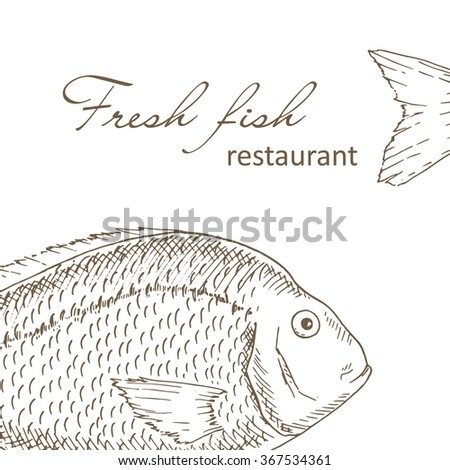 Fish background. Big fish restaurant menu design cover. Fishing flyer. Fresh fish template. Fish hand drawn vector illustrations. Fish gourmet card. Fishery frame
