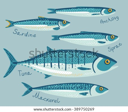 Fish collection for conservation in flat style. Set with anchovy, sardine, sprat, tuna and mackerel fishes for preservation. Vector illustration. Seafood packaging concept.  - stock vector