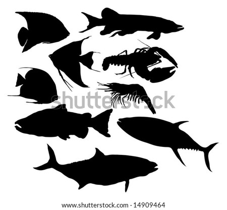 Fish / Seafood silhouettes - stock vector