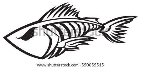 Fish Fin Stock Images, Royalty-Free Images & Vectors | Shutterstock