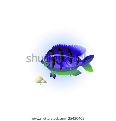 Fish, stones, bubbles, sea grass, isolated on white, vector