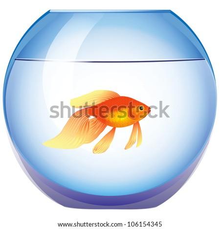 Fishbowl with a goldfish. Vector illustration. Cartoon.