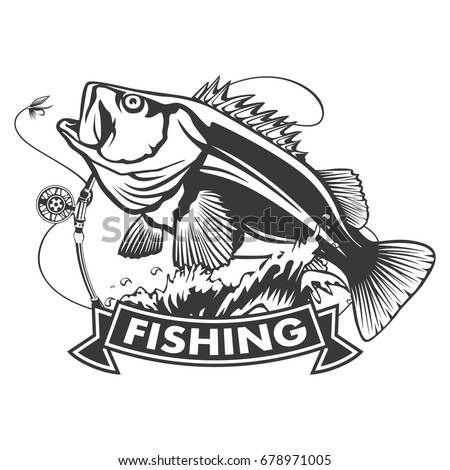 largemouth bass isolated stock images royaltyfree images