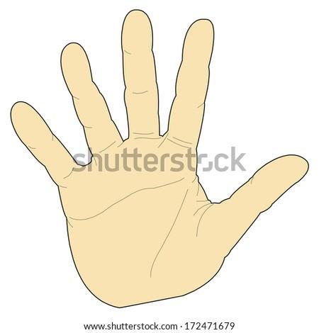 Five Hand - stock vector