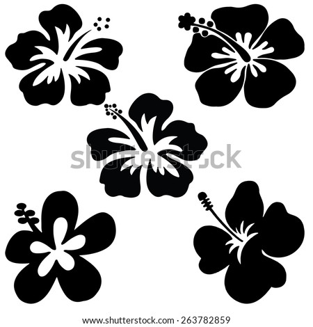 Five Hibiscus vector on white background - stock vector