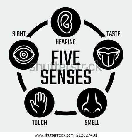 Five senses vector icons set - stock vector