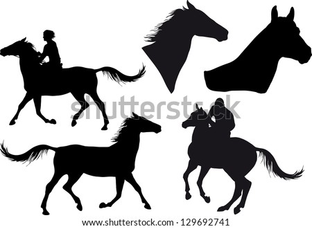 five silhouettes of horses, horse heads and riders - stock vector