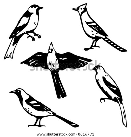 Five stylized vector songbird illustrations - stock vector