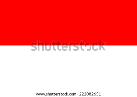Flag of Indonesia - stock vector