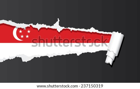 Flag of Singapore under ripped paper vector illustration. - stock vector