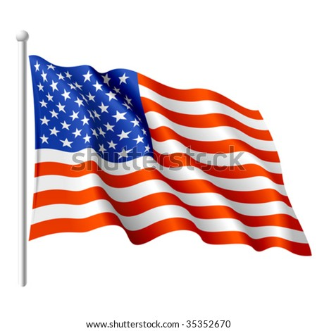 Flag of the USA. Vector. - stock vector