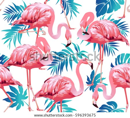 Flamingo Stock Images Royalty Free Images Amp Vectors