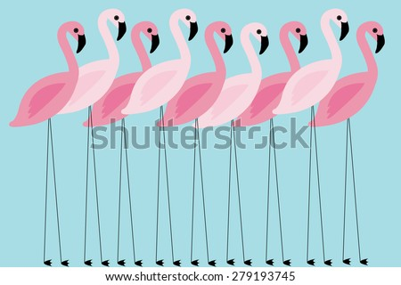 flamingo vector/illustration - stock vector