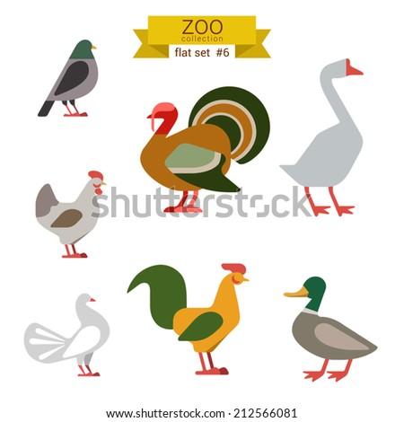 Flat design vector birds icon set. Dove, turkey, goose, chicken, rooster, duck. Flat zoo children cartoon collection. - stock vector