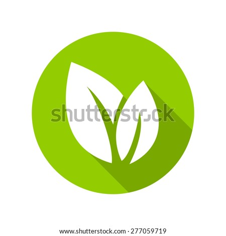 Flat leaves icons. Vector illustration. - stock vector