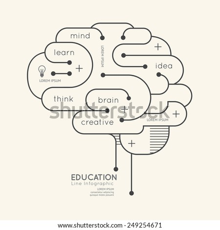 Flat linear Infographic Education Outline Brain Concept.Vector Illustration. - stock vector