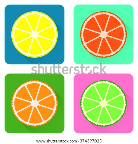Flat long shadow citrus fruits icon set. High-quality icons for your design. Vector illustration