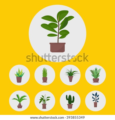 Flat style house plants and flowers in pots vector icons. Set of green indoor vector house plants icons. House plants with shadows on yellow background. Cactus, palm, aloe vera, ficus. - stock vector