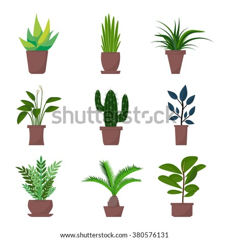 Flat style houseplants and flowers in pots vector icons. Set of green indoor vector houseplants icons. Houseplants isolated on white background.  - stock vector