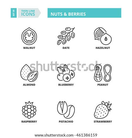 Flat symbols about nuts & berries. Thin line icons set.