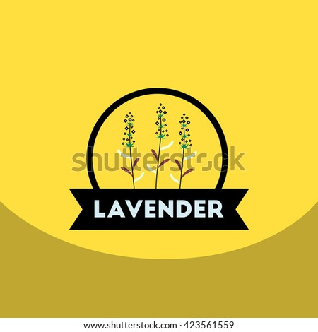 flat vector icon design collection Kitchenware seasoning lavender
