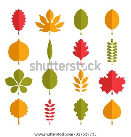 Flat vector illustration: silhouettes of tree leaves (elm, birch, alder, aspen, willow, maple,  poplar, rowan, hawthorn, walnut, apple, oak, acacia, chestnut, conker etc.) isolated on white background - stock vector