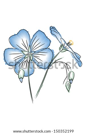flax flower in watercolor style - stock vector