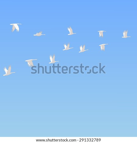flock of snow geese flying in the blue sky freehand drawing wildlife animals vector - stock vector