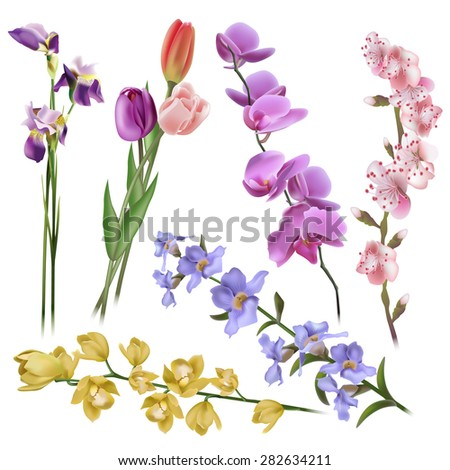 Floral background. Set of spring flowers for design purposes. Fully editable vector - stock vector