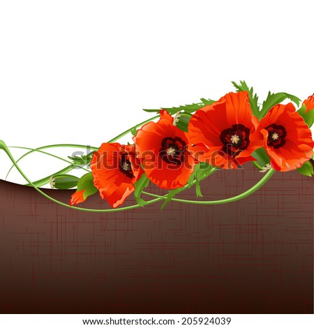 Floral background with red poppies. Vector illustration - stock vector