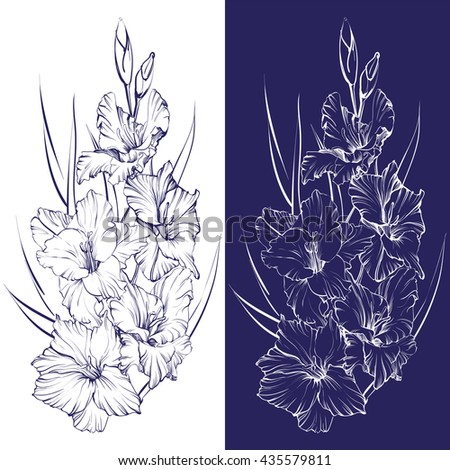 floral blooming gladiolus hand drawn vector illustration sketch - stock vector