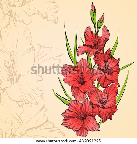 floral blooming gladiolus hand drawn vector illustration sketch. Group of flowers. Floral background with gladiolus isolated on background.