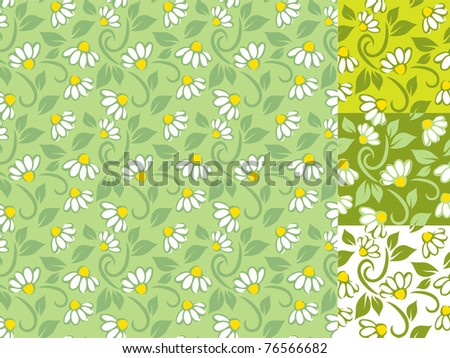 Floral chamomile patterns - stock vector