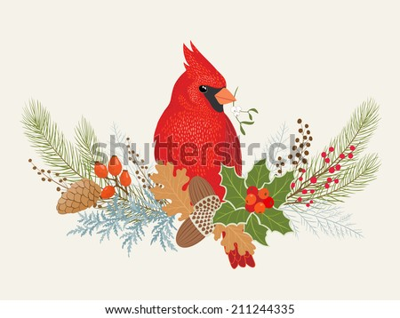 Floral decoration and Cardinal bird for your Christmas design. - stock vector