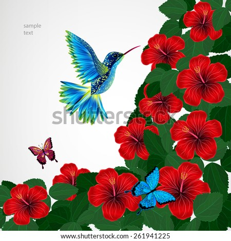 Floral design background. Hibiscus flowers with bird, butterflies. - stock vector