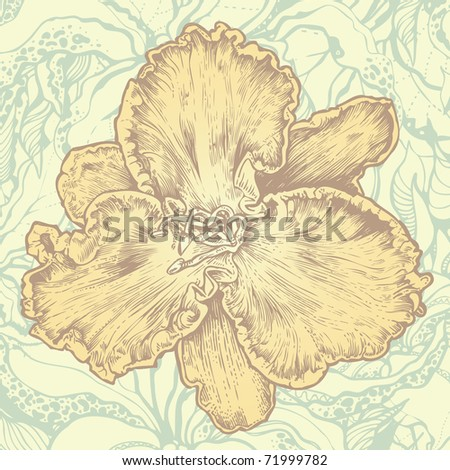 floral design element and abstract floral background. engraved retro style. vector illustration - stock vector