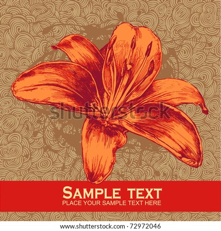 floral design element and hand-drawn doodle background, engraved retro style. vector illustration - stock vector