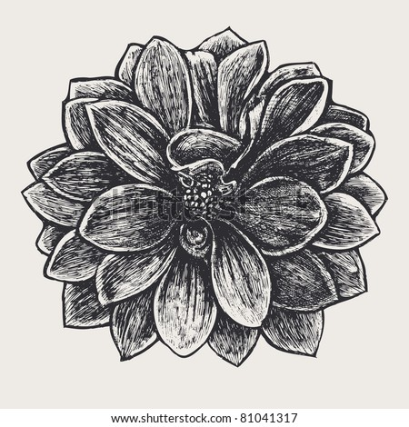 floral design element, engraved retro style. vector illustration - stock vector
