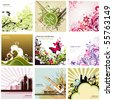 floral design elements set - stock photo