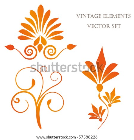 Floral elements. Vector set - stock vector