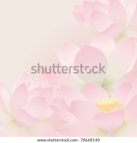 Floral postcard. Lotus. - stock vector