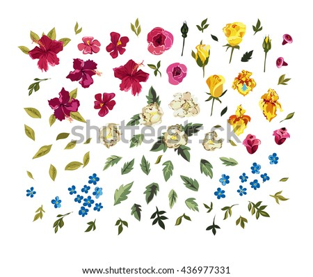 Floral set. Colorful floral collection with leaves and flowers. Spring or summer design for invitation, wedding or greeting cards - stock vector