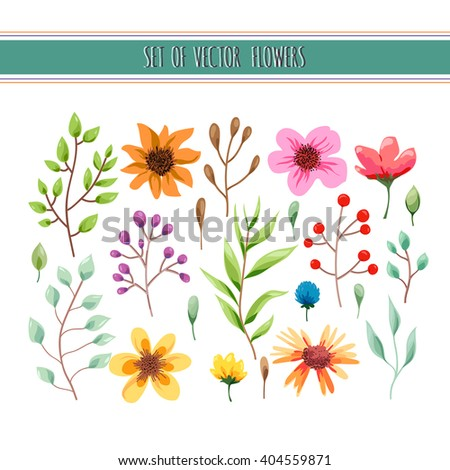Floral watercolor collection with leaves and flowers. Wedding, romantic collection.Spring or summer design for invitation, wedding or greeting cards. Vector illustration - stock vector