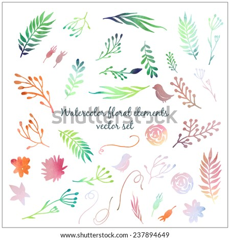 Floral watercolor elements set. Hand drawn flowers and plants silhouettes kit - stock vector