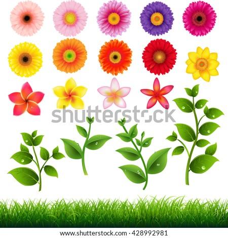 Flower Big Set, With Gradient Mesh, Vector Illustration - stock vector