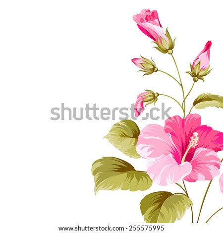 Flower hibiscus tropical plant isolated over white. Vector illustration. - stock vector