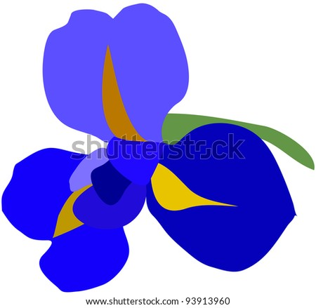 flower of iris - stock vector