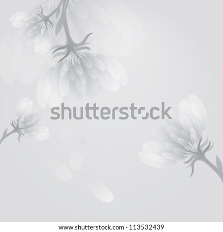 Flower peony / Soft white-and-black background - stock vector