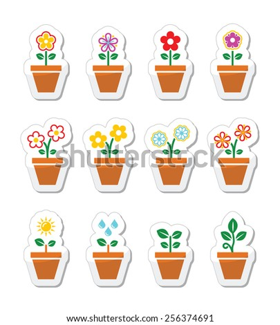 Flower, plant in pot vector icons set - stock vector