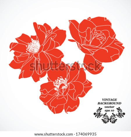 flower red roses isolated on white background illustration tattoo vector